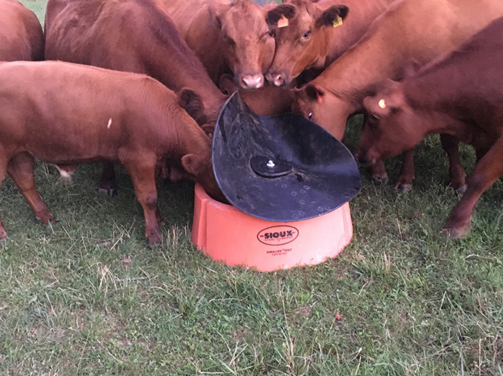 Heavy-Duty Ground Mineral Feeder | Sioux Steel Company