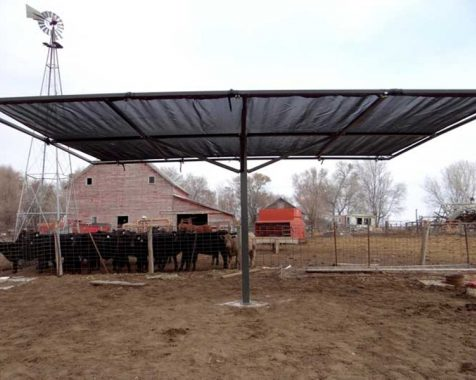 Livestock Shade