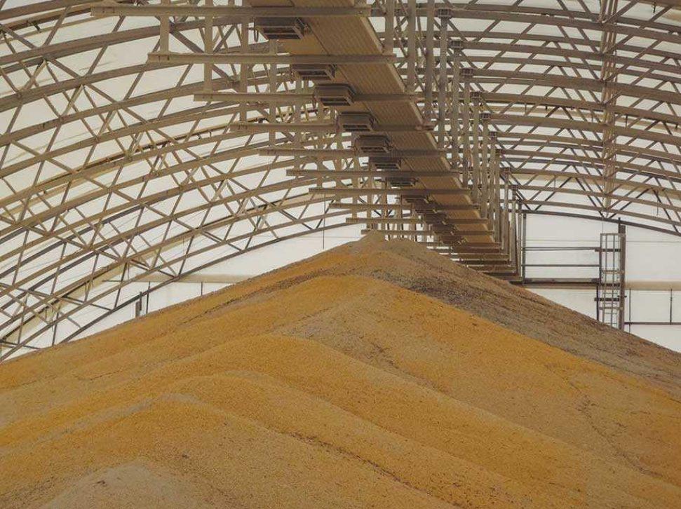 Grain Shield